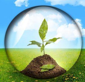 Экологическая экспертиза - что это такое