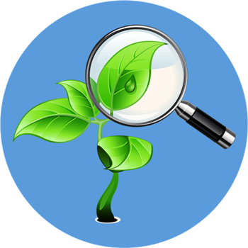 Экологическая экспертиза, Диск Самара